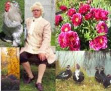 """МАУК """"Мемориальный ботанический сад Г.А. Демидова"""""""